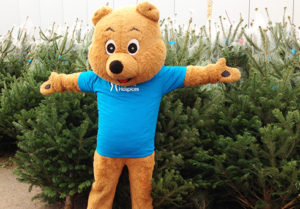 Raffles the bear is looking forward to helping with Pilgrims Ashford Christmas Tree Collections again this year!